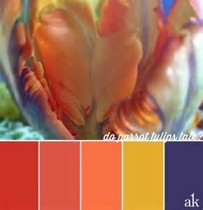 tribal color palette